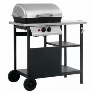 Turnbull 2-Burner BBQ Grill